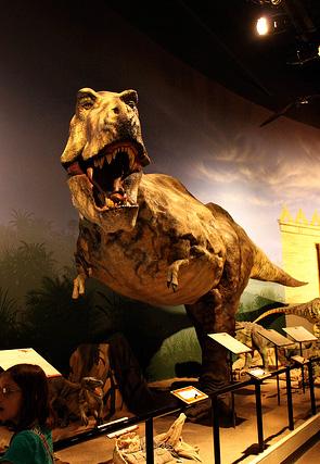 creationmuseum9