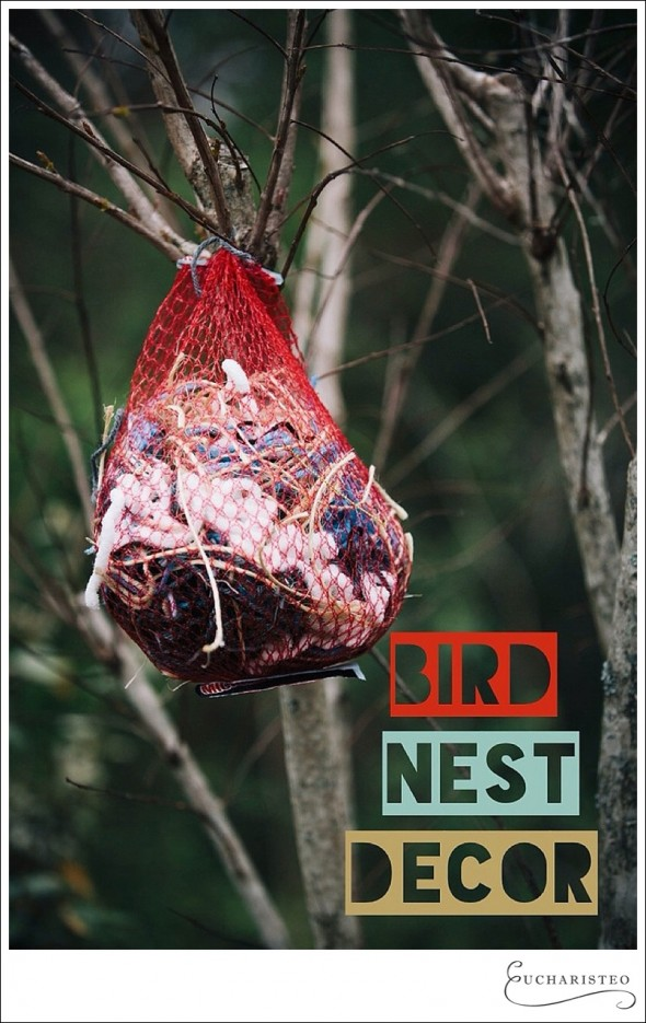 Birds Need Decor, Too - Eucharisteo.com